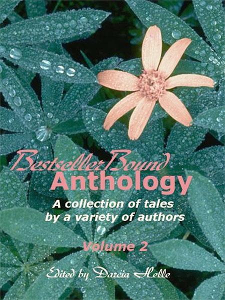 Bestseller Bound Anthology Vol.2