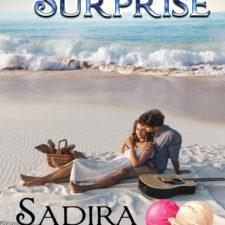 Book Cover for author Sadira Stone